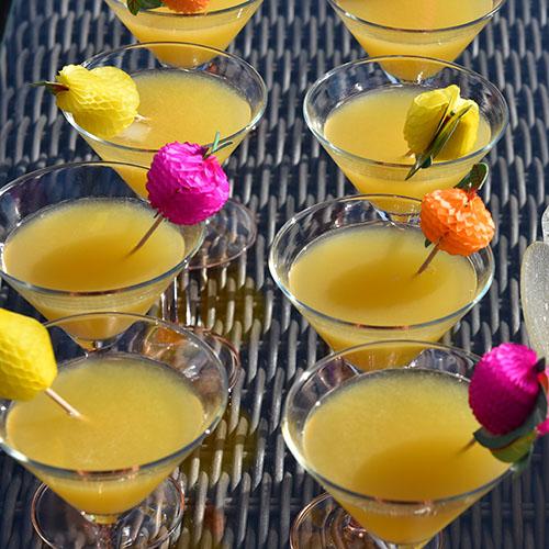 Velkomstdrink (alkoholfri) Ingredienser: 1 Sitron (saft) 1 l Appelsinjuice 1 l Eplejuice ½ l Brus med sitronsmak Isbiter