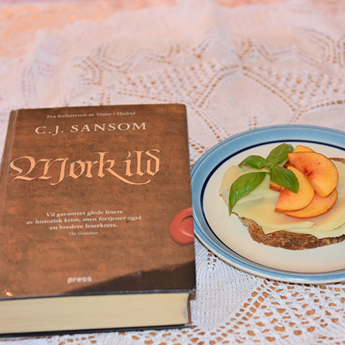 Sansom, C.J. (2009) «Mørk ild». Press